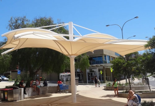 Cicada Shade Structures